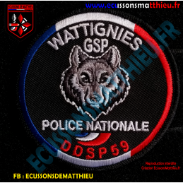 GSP POLICE NATIONALE DDSP59